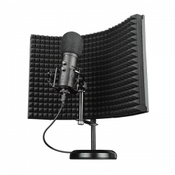 Microfono con Schermo...